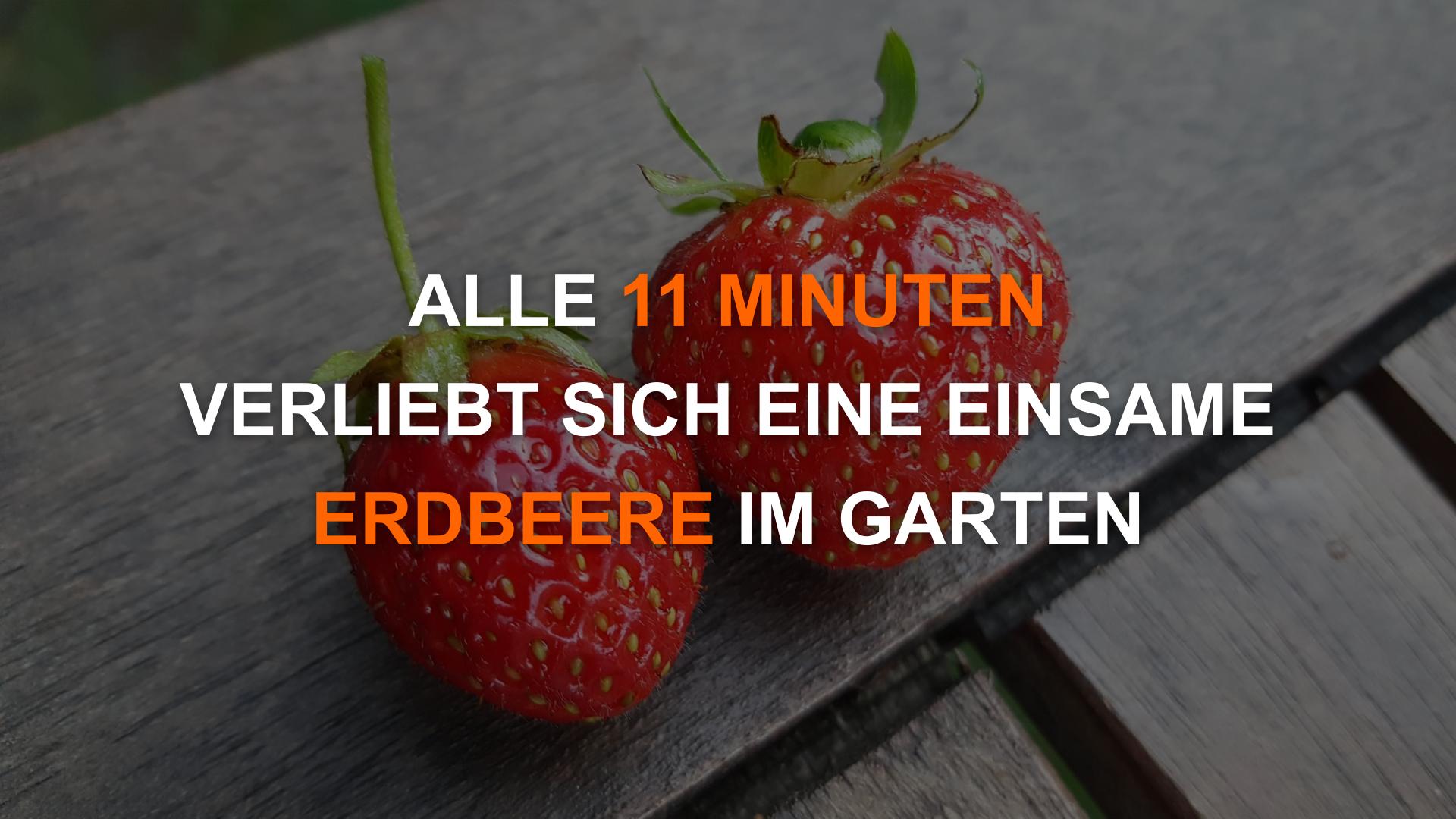 """""""Alle 11 Minuten verliebt sich ein Single über Parship"""" - Alle 11 Minuten..."""
