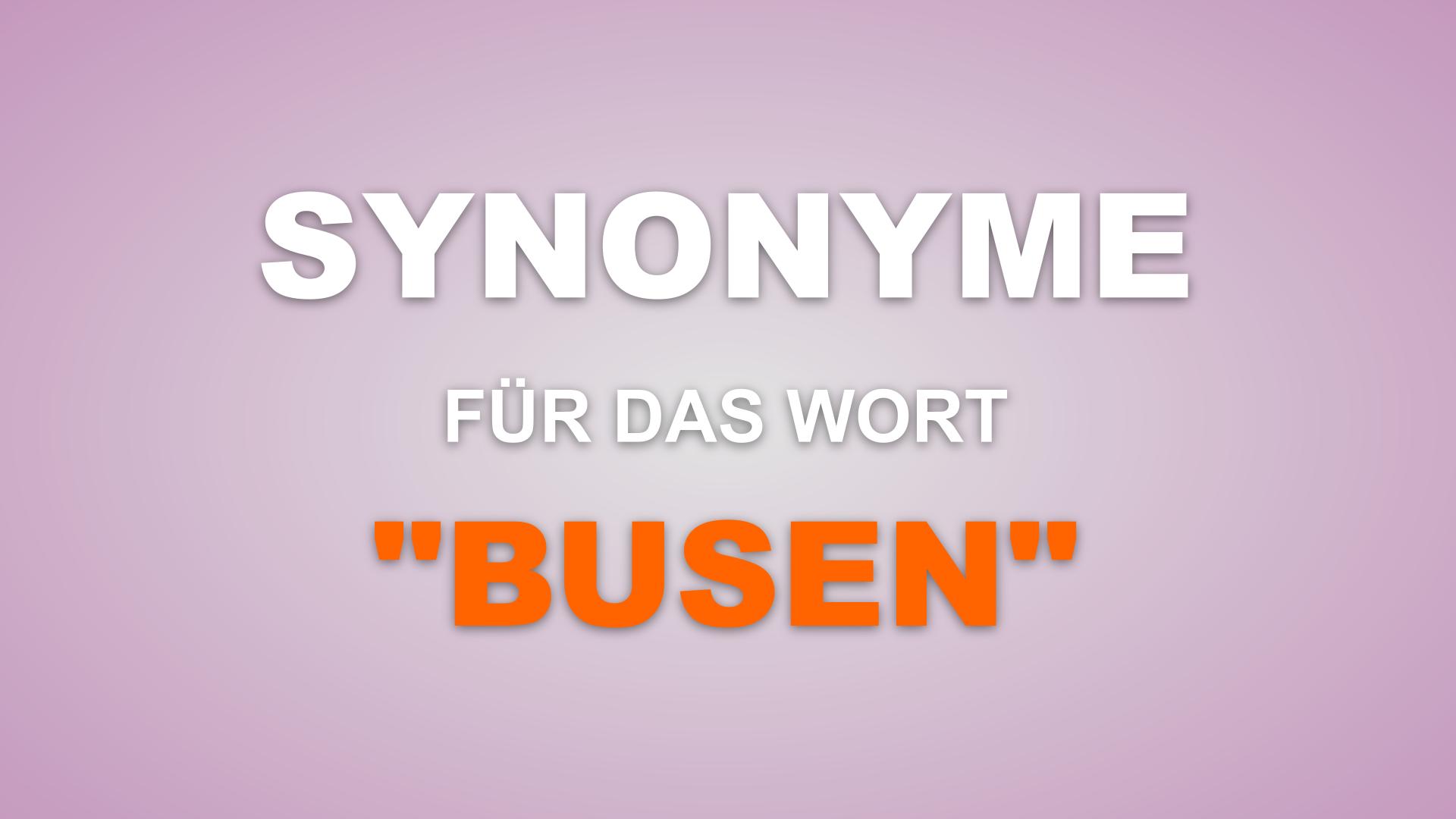 137 Synonyme für das Wort Busen
